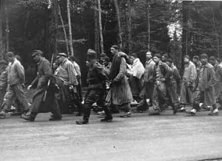 Dachau Gruenwald